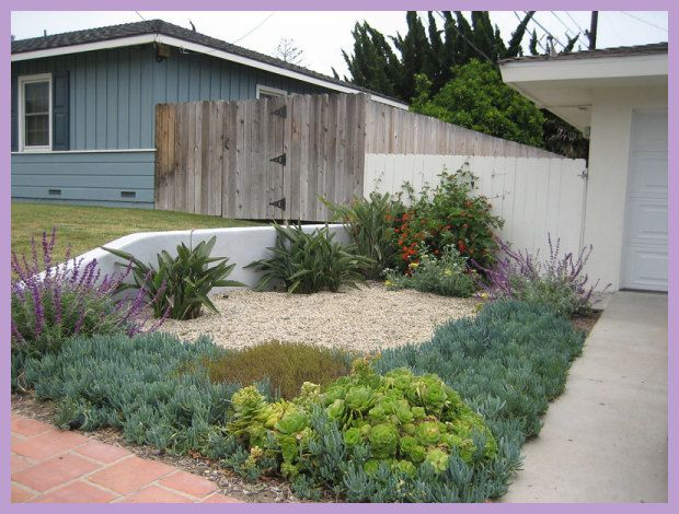nice Garden designs drought tolerant xeriscape in Austin