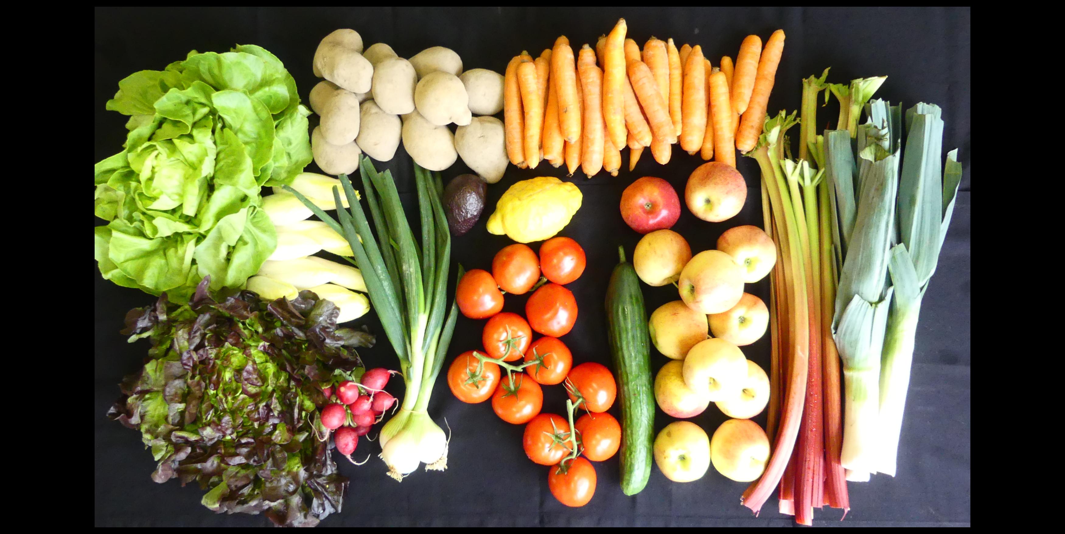 Votre panier bio pour 3 personnes  #uglyfruits #bio #organic #zurich #neuchâtel  #geneve #fooddelivery #uglyfruits #uglyfruitsandvegetables #uglyfruiters #bio #biofood #organic #organicfood #food #foodista #veggie #veggiefood #green #greenfood #vegetarisch #vegetarian #basket #panierbio #biofüralle #suisse🇨🇭 #switzerland #schweiz🇨🇭
