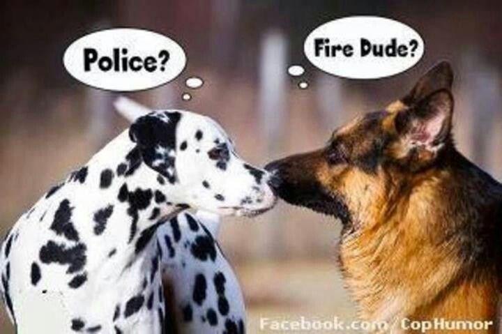Fire Dog Cops Humor Funny Animals Police Humor