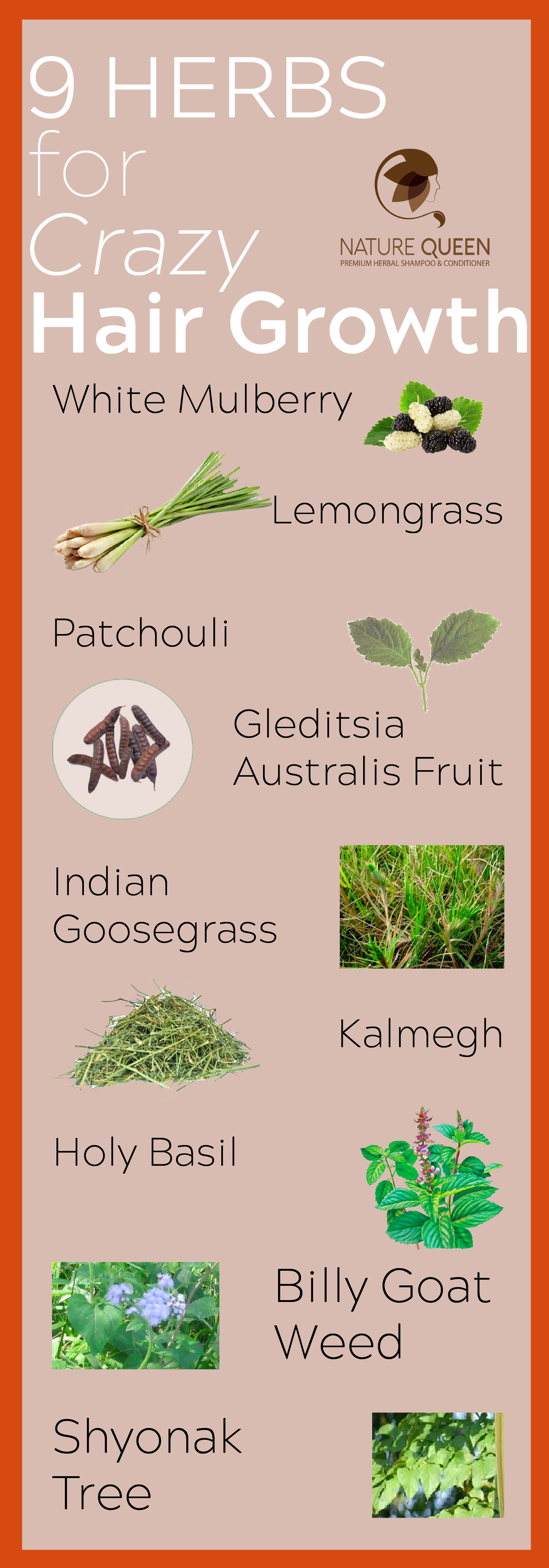 9 herbs for crazy hair growth: white mulberry, lemongrass, patchouli
