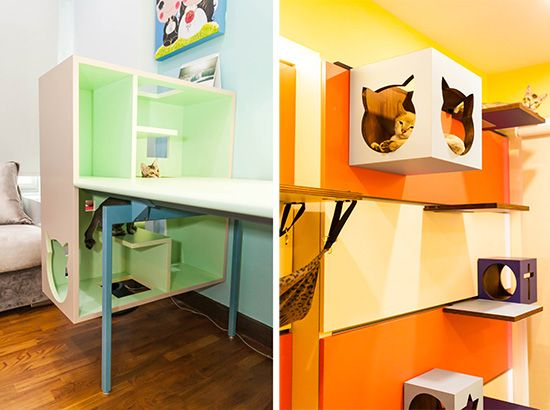 Beautiful Cat-friendly Home in Singapore from J.En & C.Rand Designs on copy cat chic nursery room design, cat shelves, cat bathroom accessories, cat room house design, cat condo from old dresser, cat house home design, cat staircase design, cat chair, cat wall walks designs, cat interior design, cat from home, cat stairs, cats in the kitchen design,