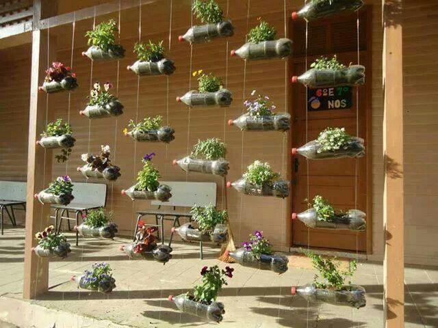 Plastic bottles reused as planters.
