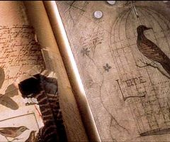 ∞ - Practical Magic (1998)