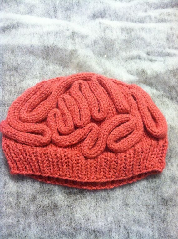 Knit Brain Hat   Thinking Cap  fc961e93043f