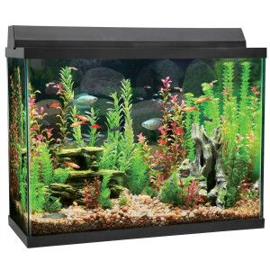Top Fin Aquarium Starter Kit 37 Gallon Small Fish Tanks