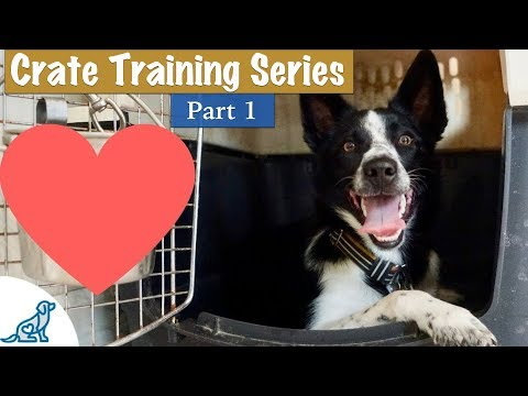 276 Crate Training A Puppy So They Love Their Crate