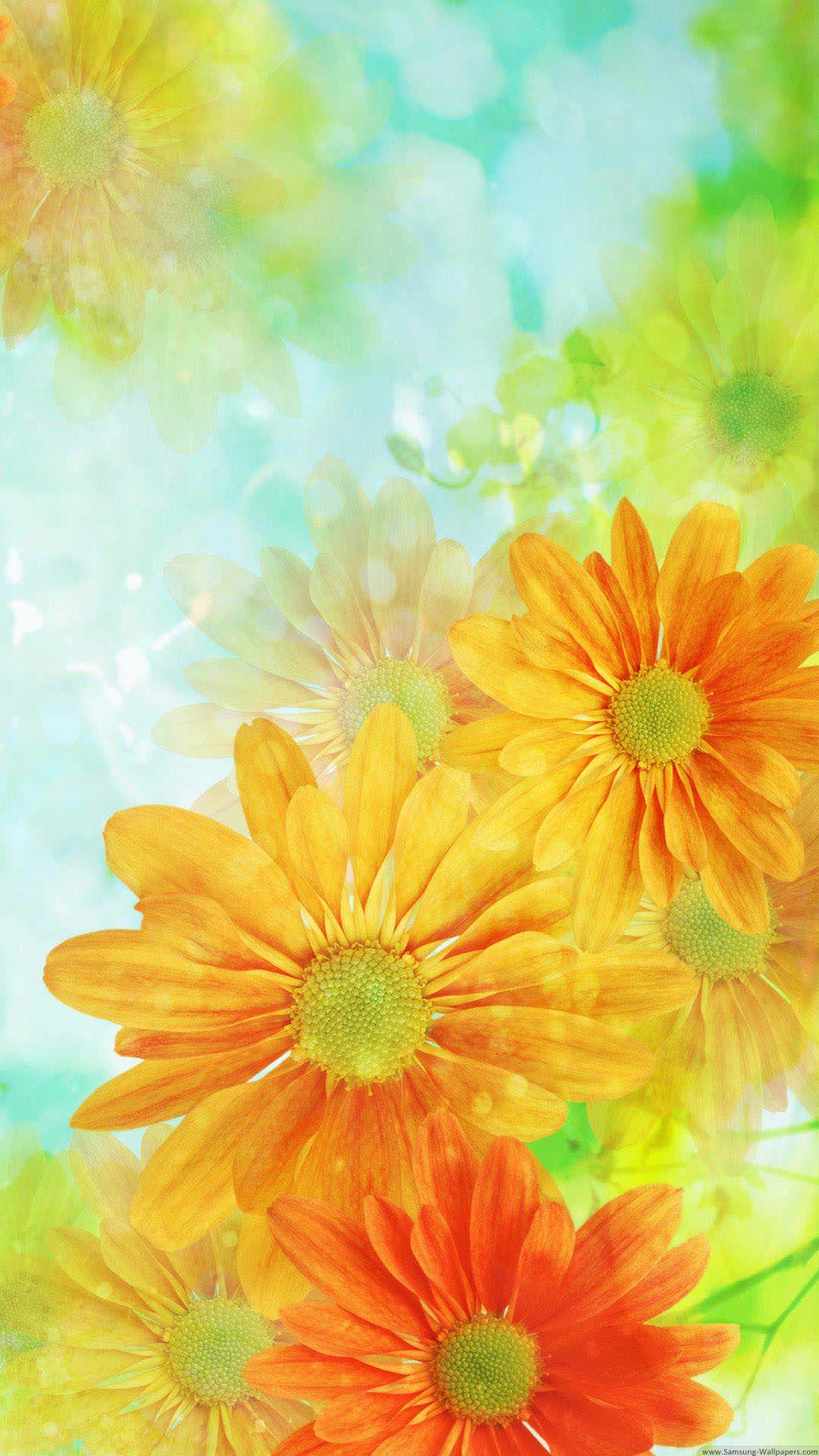 オレンジ色の綺麗な花 花 壁紙 蝶々 イラスト ピンク 壁紙 Iphone