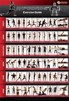Ripcords Exercise Guide Poster Resistance Band Workout Chart Amazon Sports Resistance Workout Resistance Band Workout Workout Chart