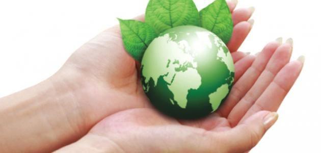 طرق حماية البيئة موسوعة موضوع Science Illustration Projects To Try Projects