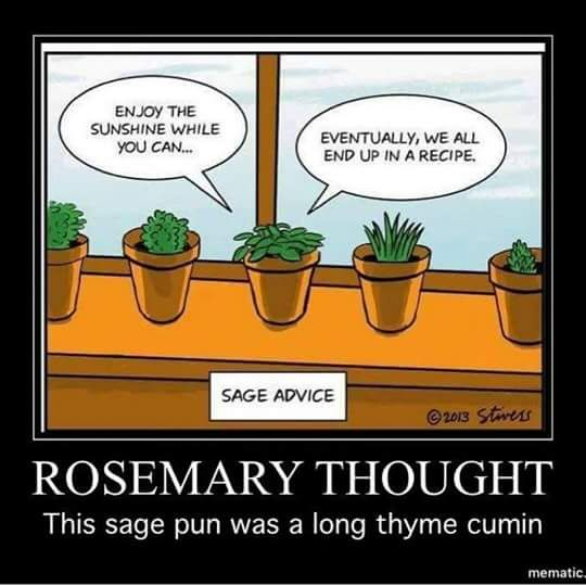 Pin By Beverly Stewart On Garden Quotes Herb Puns Puns Gardening Humor