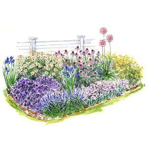 beginner garden for full sun front yards perennials and yards