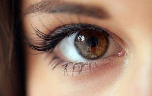40 фактів про очі, яких ви не знали