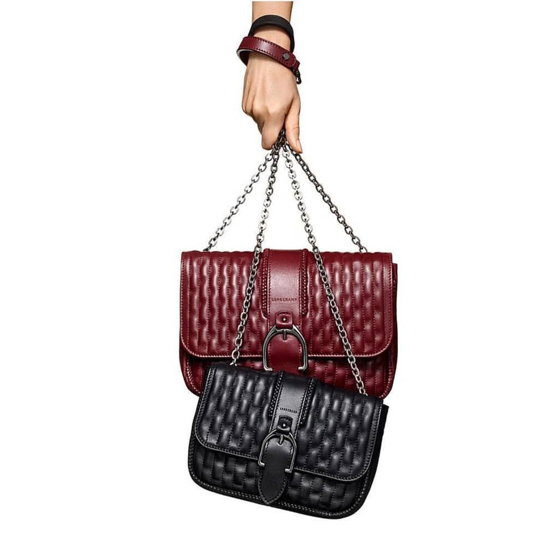 Introducing the Amazone bag by Longchamp.  LongchampAmazone  89582a6ec1a97