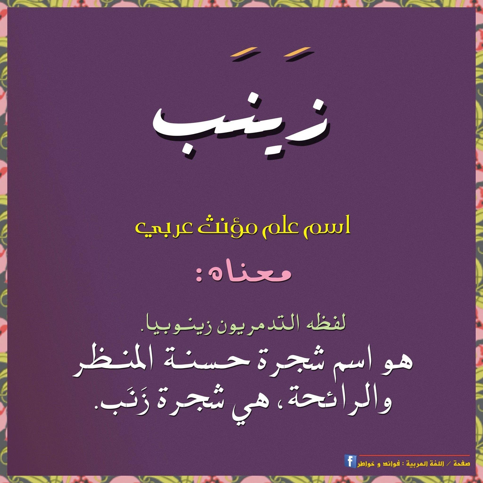 Pin By Medo Tarik On العربية Cool Words Learning Arabic Arabic Language