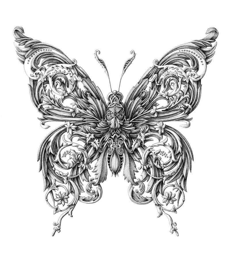 Amazing intricate ink butterfly