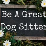 Be A Great Dog Sitter - http://healthychildfreeliving.com/be-a-great-dog-sitter/