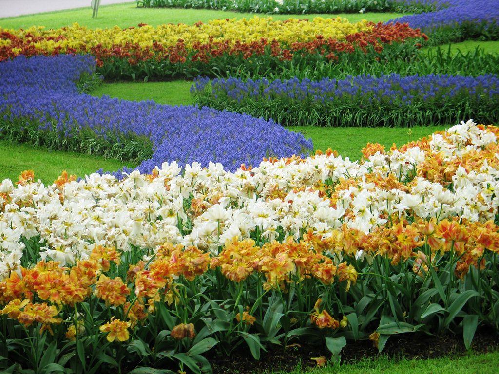 Worldus largest flower garden flowers pinterest gardens