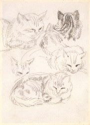 Six studies of a cat - Chalk on cream woven paper.   Ernest Jackson RA 1872 - 1945