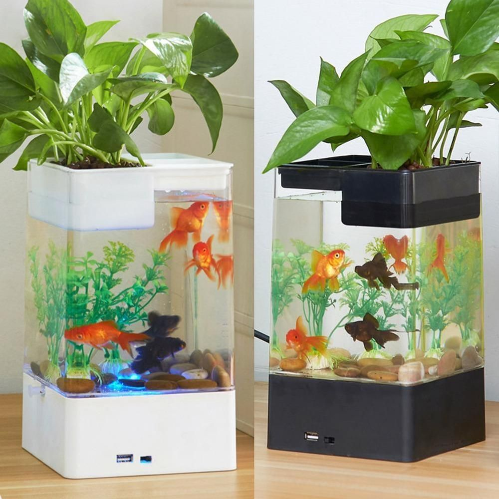 Mini Selbst Reinigung Desktop Fish Tank Aquarium Led Bunte Beleuchtung Starter Kit Neuesten Fisch Tank F Mit Bildern Aquarium Led Desktop