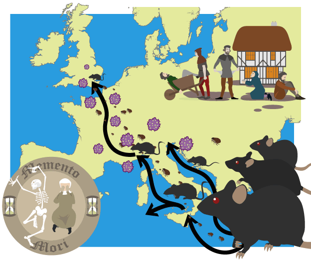 Map of the route of the black death along trade routes from southern map of the route of the black death along trade routes from southern europe gumiabroncs Choice Image
