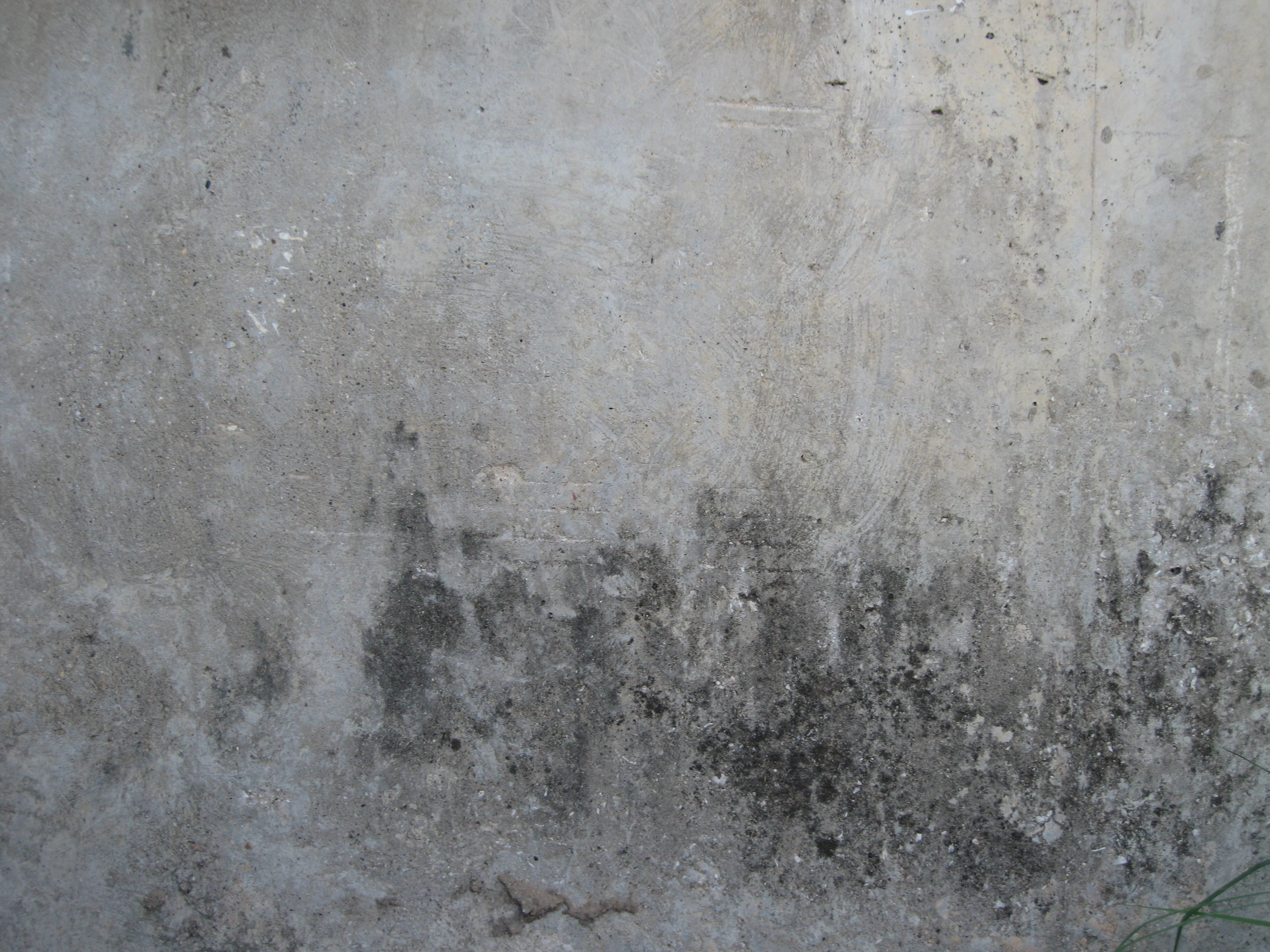 Grunge Textures Backdrops In 2019 Cement Texture