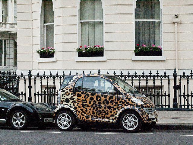 Leopard Print Smart Car Smart Car Smart Fortwo Car