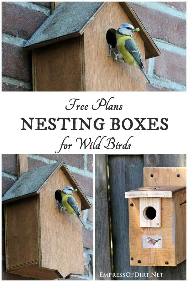 Nesting Box Building Plans for Wild Birds | Gardens ...