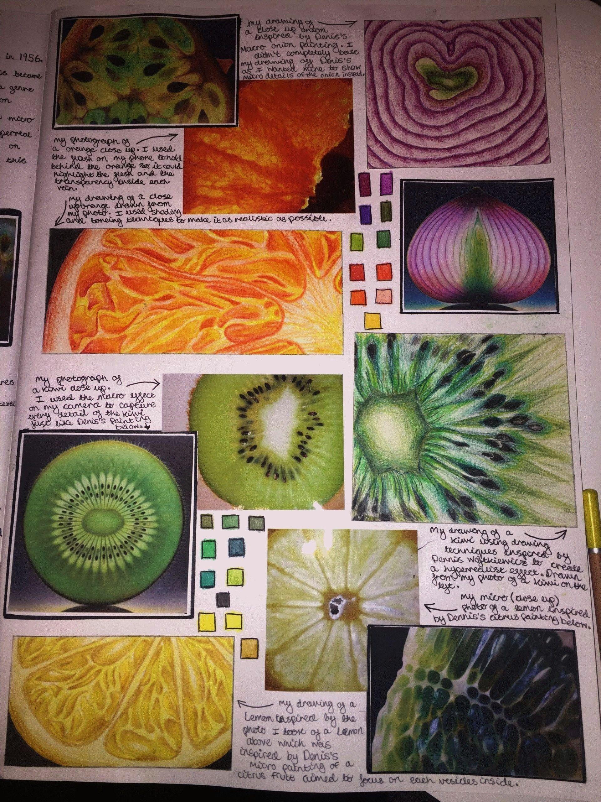 in guashe  A Level Art Sketchbook Fruit studies in guashe  A Level Art Sketchbook  Art and photography analysis sheet for Alevel or GT GCSE Art Vocab Bank and Sentence St...