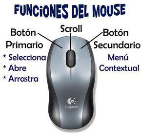 Partes del Teclado y Mouse