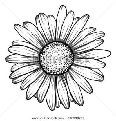 Gerbera Daisy Vectors | Download | Tattoo\'s | Pinterest | Tattoo and ...