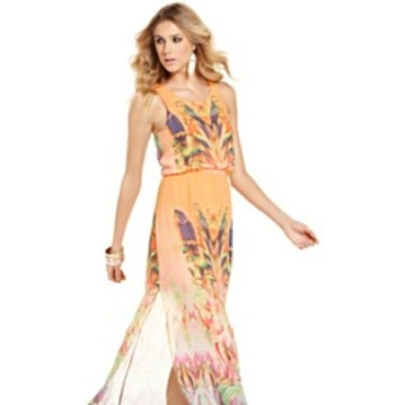 Walter Baker Parrot Maxi Chiffon maxi dress with two side slits.  Unique border parrot print on front and back, color is an orange sherbet with brightly colored printed hues. W118 by Walter Baker Dresses