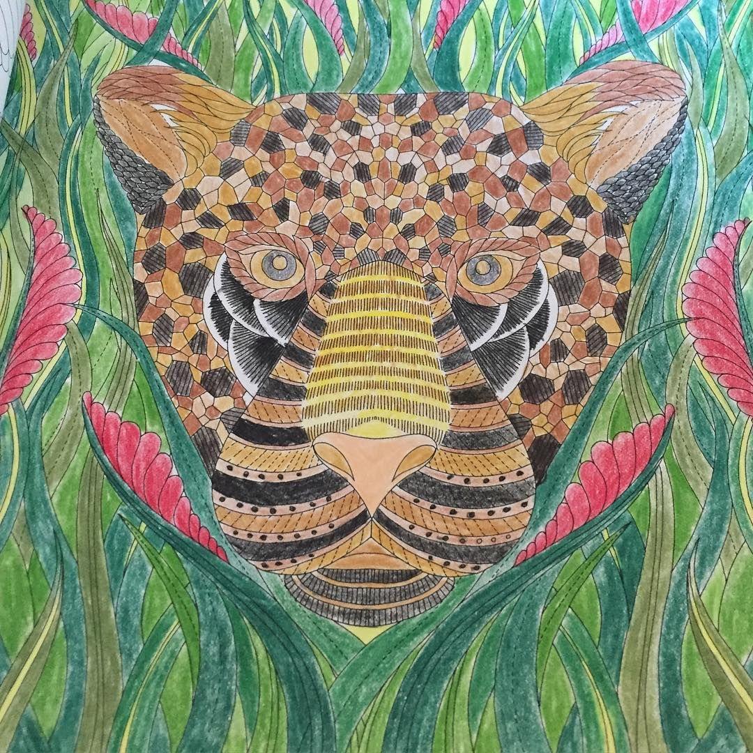 #adultcoloringbook #millimarottasbook #tropicalworldcoloringbook #colors
