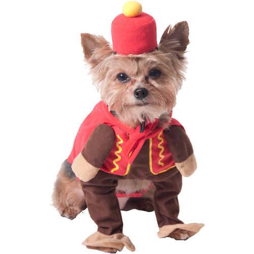 This Could Be A Flying Monkey Circus Monkey Dog Halloween