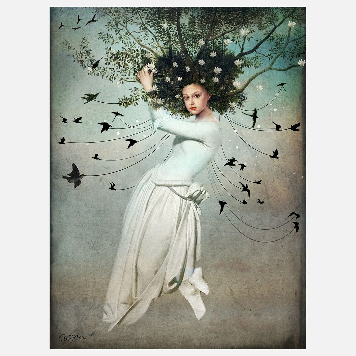 Fly With Me by Catrin Welz-Stein