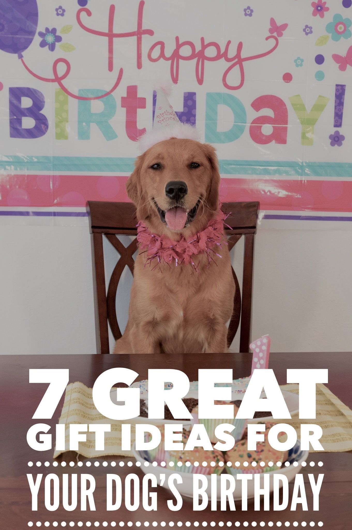 7 Great Gift Ideas For Your Dogs Birthday Get You Purse Out Ready To Treat Pooch Some Super Goodies This Year