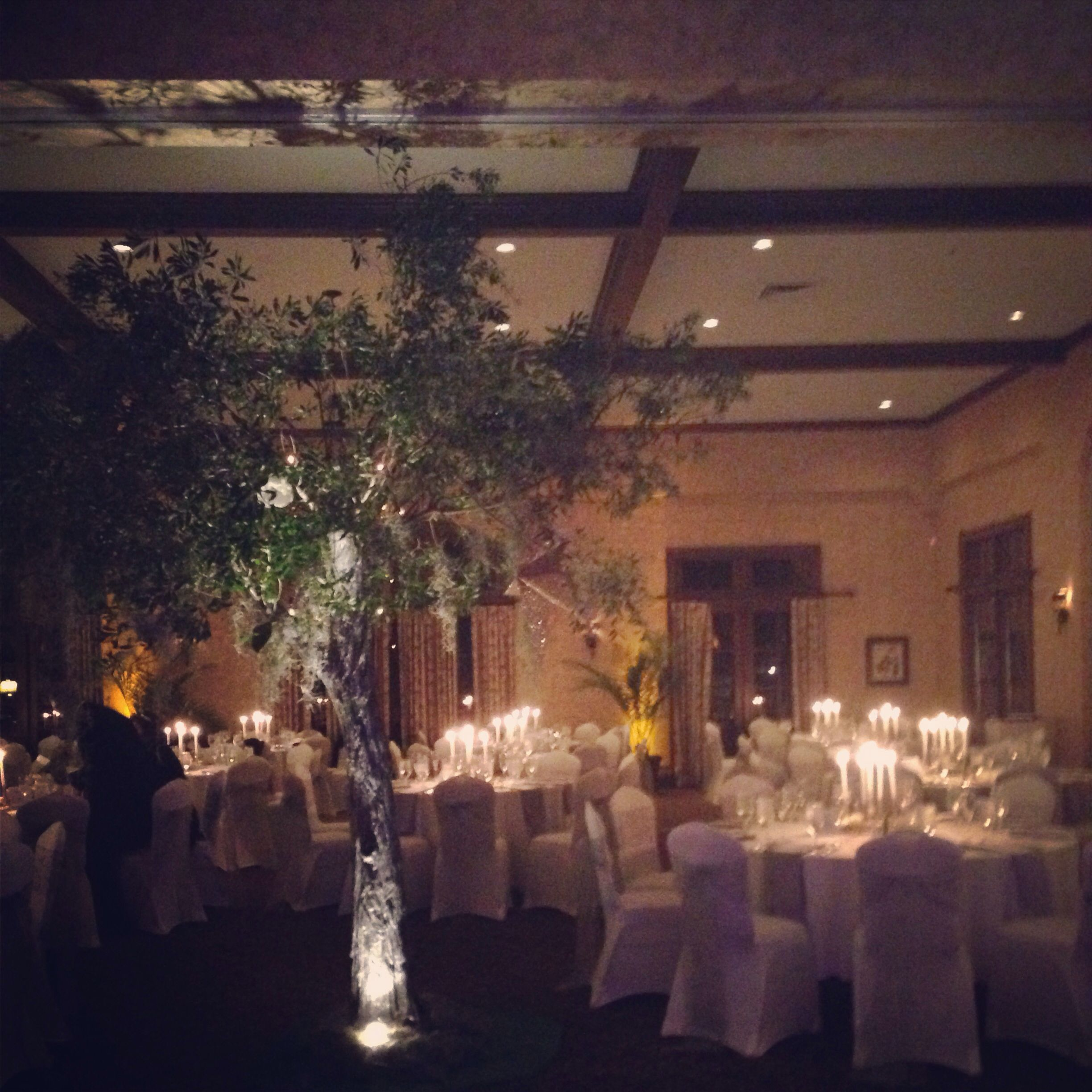 Midnight in the Garden of Good and Evil NYE GALA | Midnight in the ...