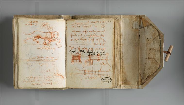 Folio 40, Chien, 1493-1494, Leonardo da Vinci