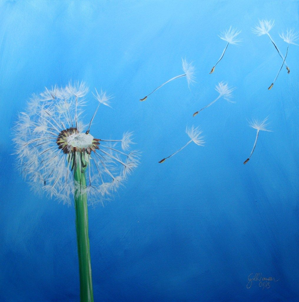 Neuestes Auftragsbild Pusteblume Zeichnen Malerei Blumen Und