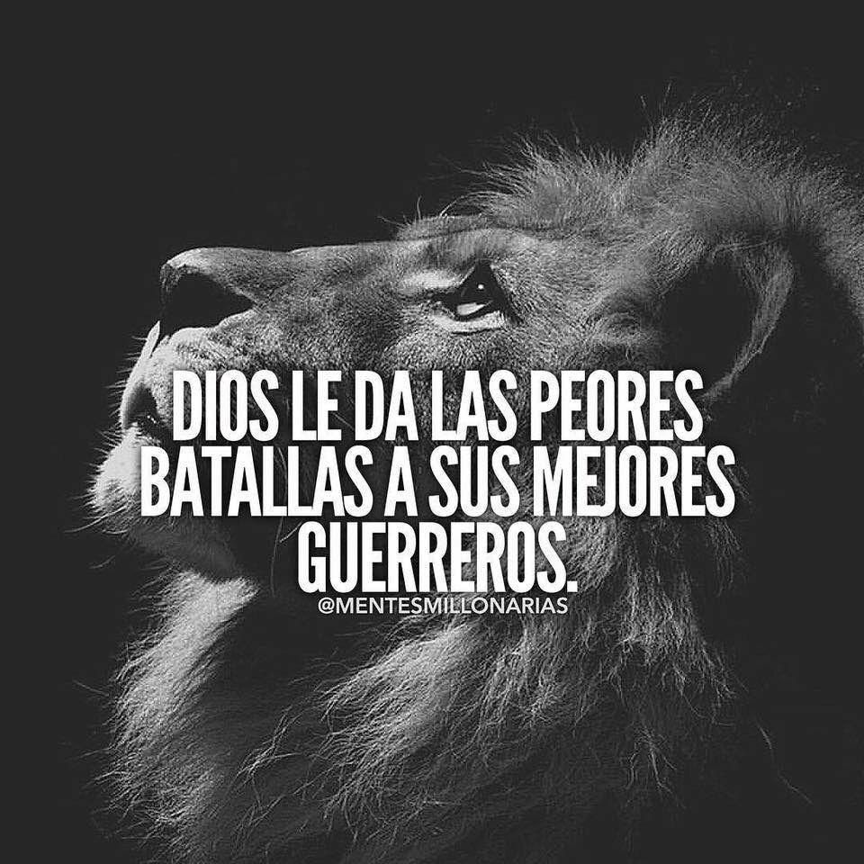 El León De Juda Frases Motivadoras Quotes Motivation Y Frases