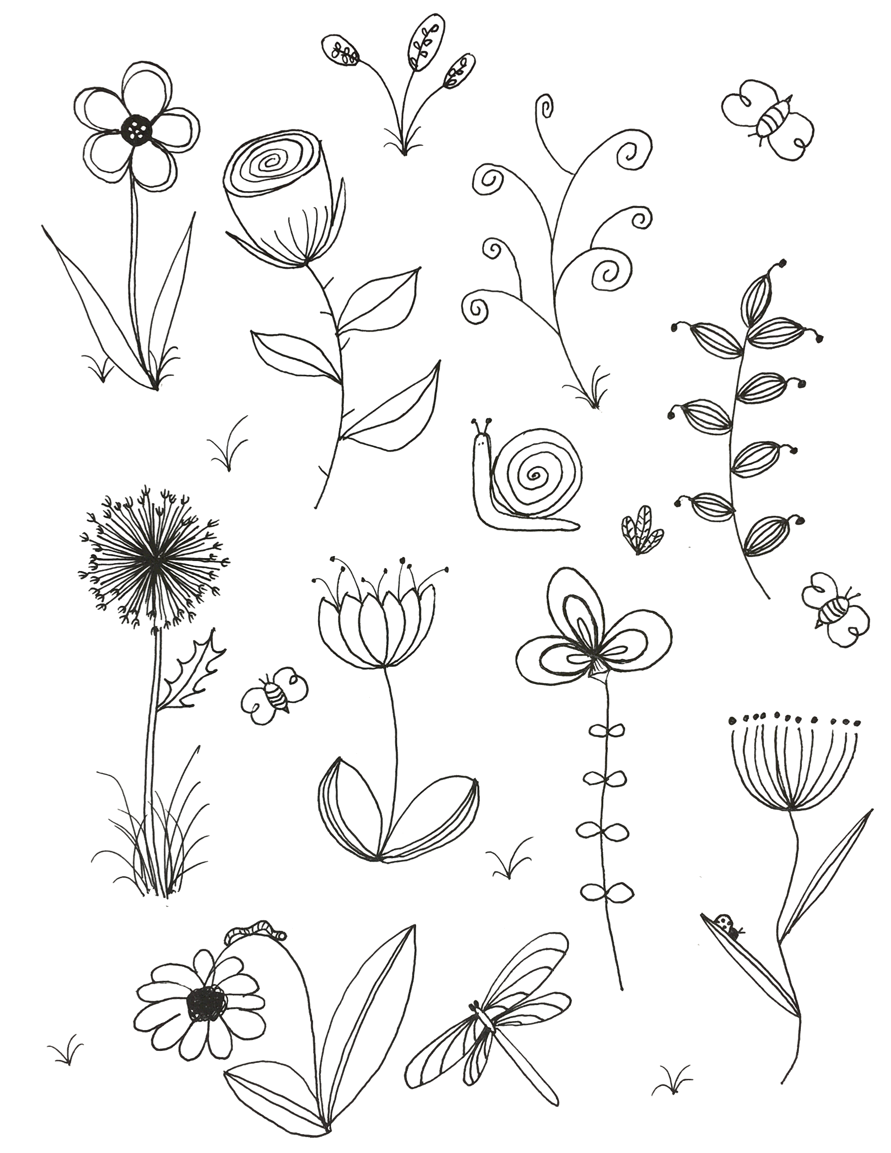 Flower Plant Line Drawing : My original art inspired by many doodle flower line
