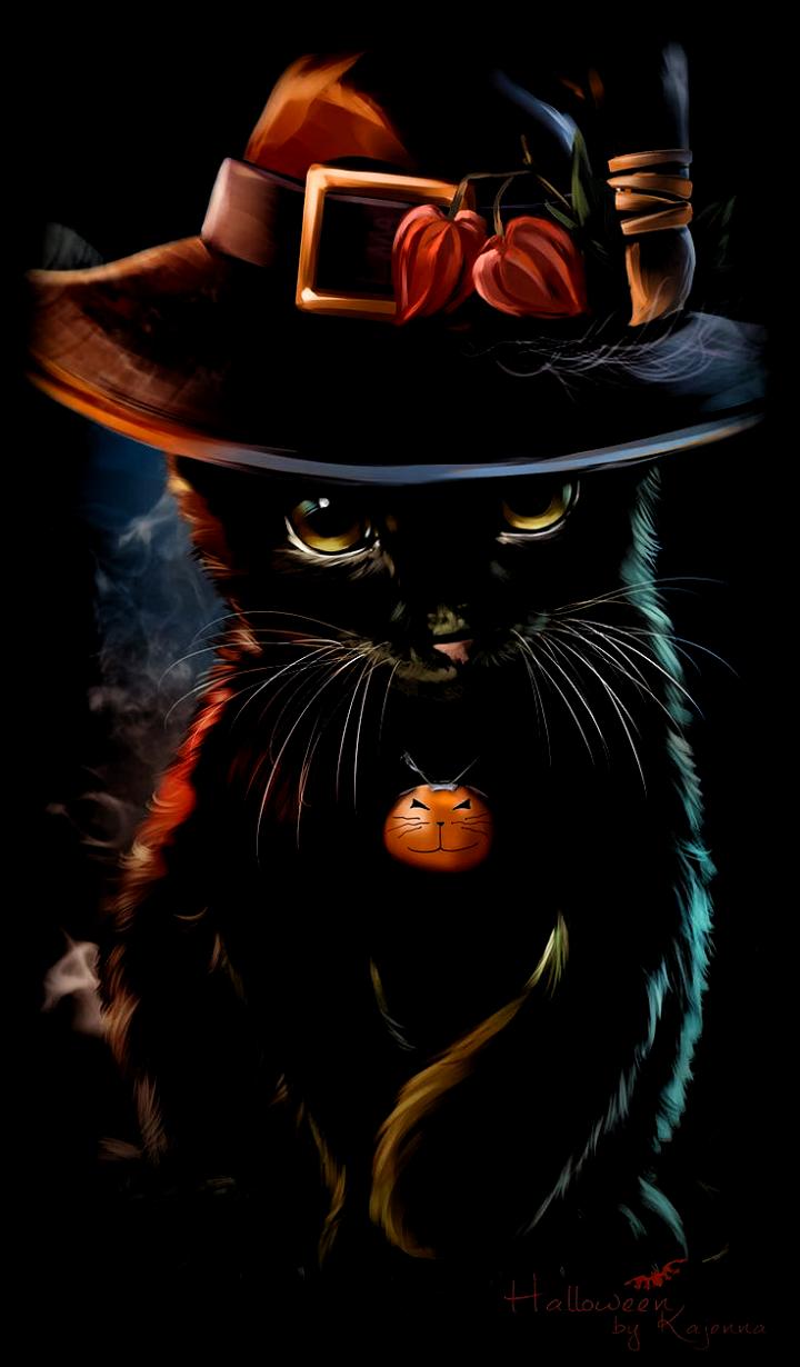 Black Halloween Cat Best Wallpaper HD lock screen