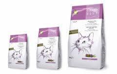 La migliore alimentazione secca per il tuo gatto. #LesPadiques #gatto