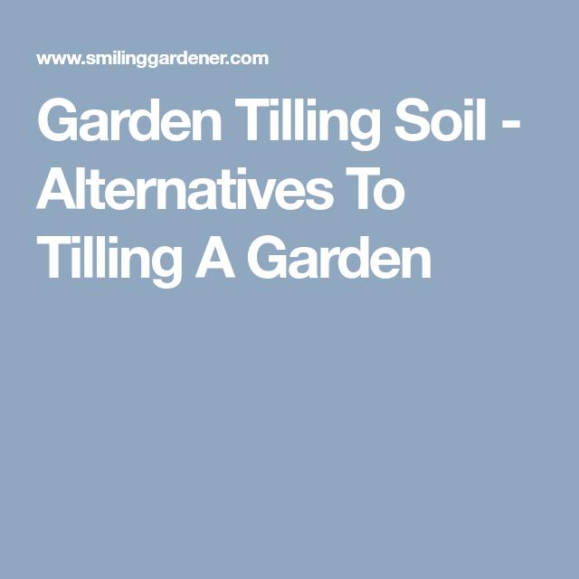 Tilling Backyard: Alternatives To Tilling A Garden