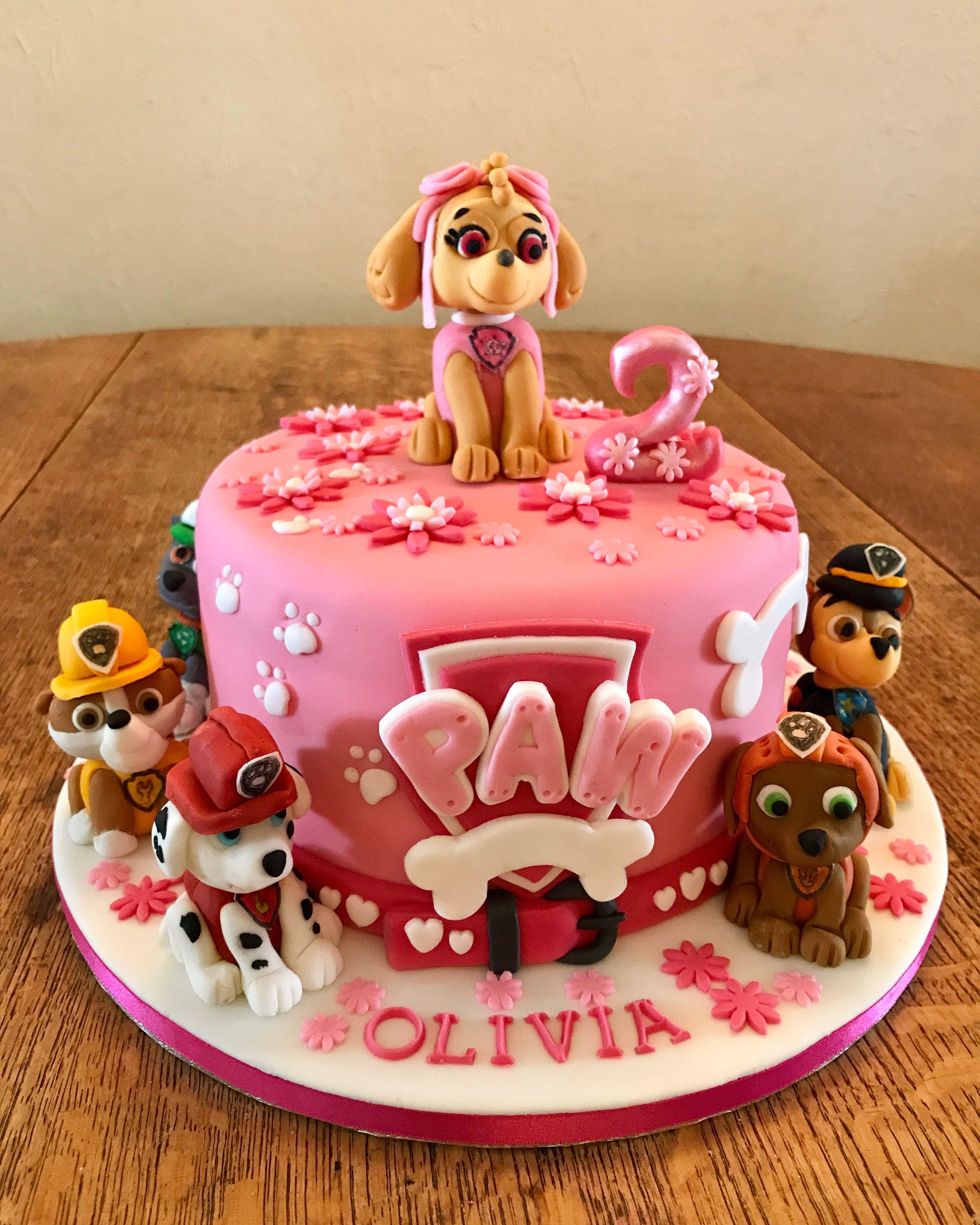 Paw Patrol Skye Cake Paw Patrol Birthday Cake Girl Paw Patrol