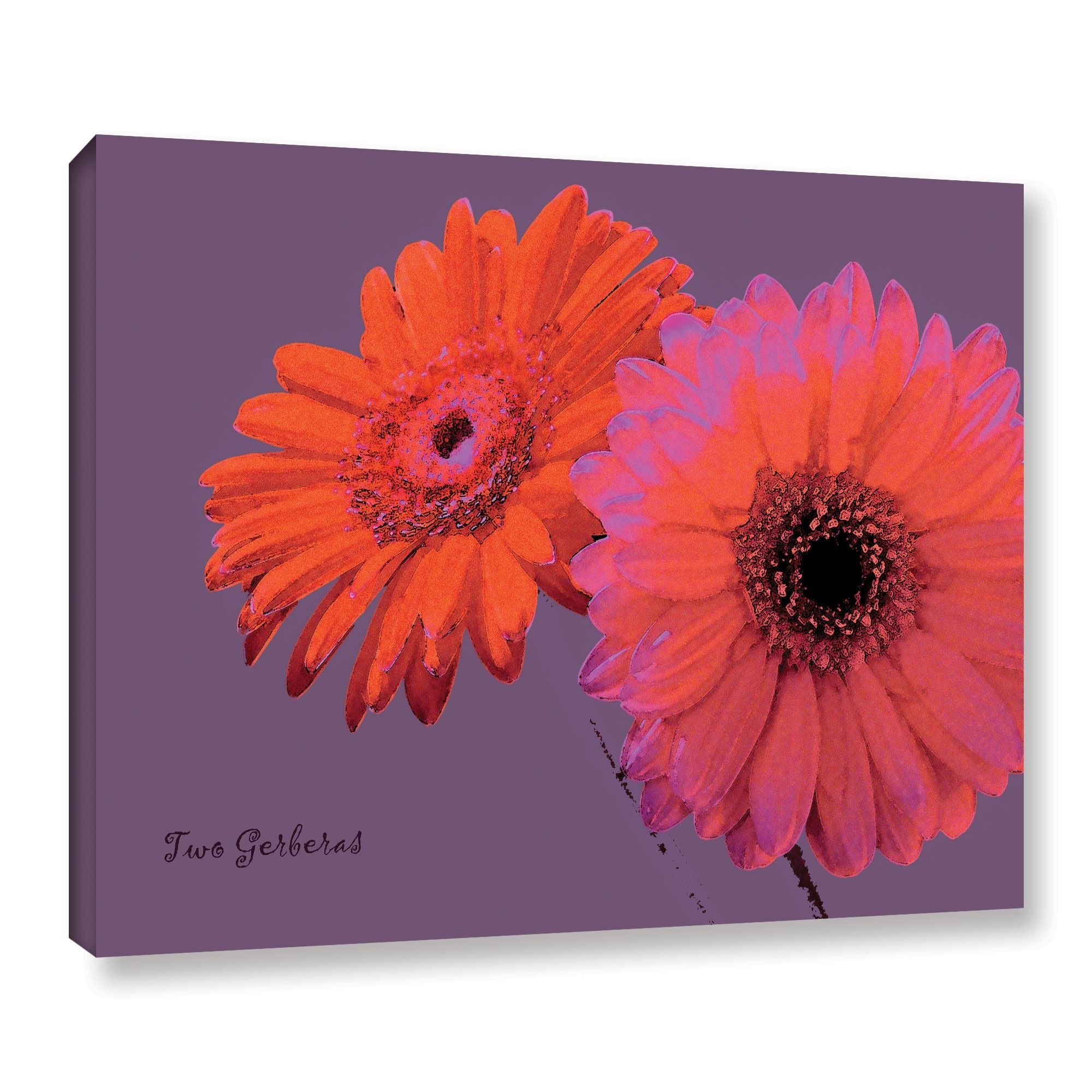 ArtWall Linda Parker 'Two Gerberas' Gallery-wrapped Canvas