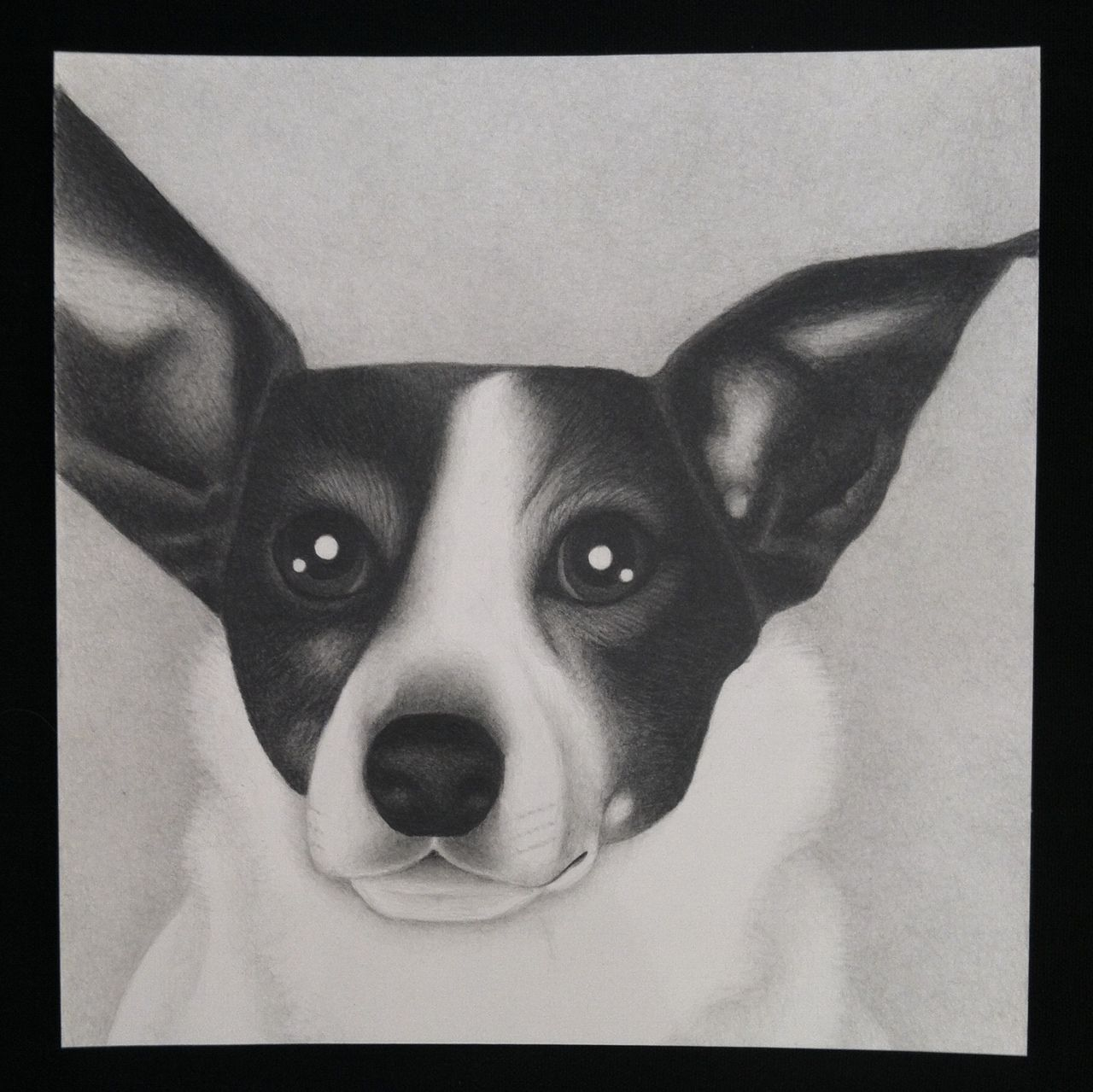 A portrait of Ellie :: by Alice Stearns | hand drawn with graphite pencils
