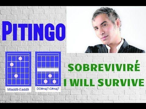 PITINGO - SOBREVIVIRE - I WILL SURVIVE | COMO TOCAR | TUTORIAL ...