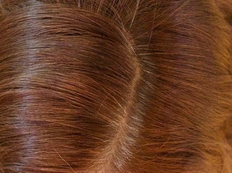 Merlot Temporary Root Touch Up Powder Hair Concealer | Best Dark ...