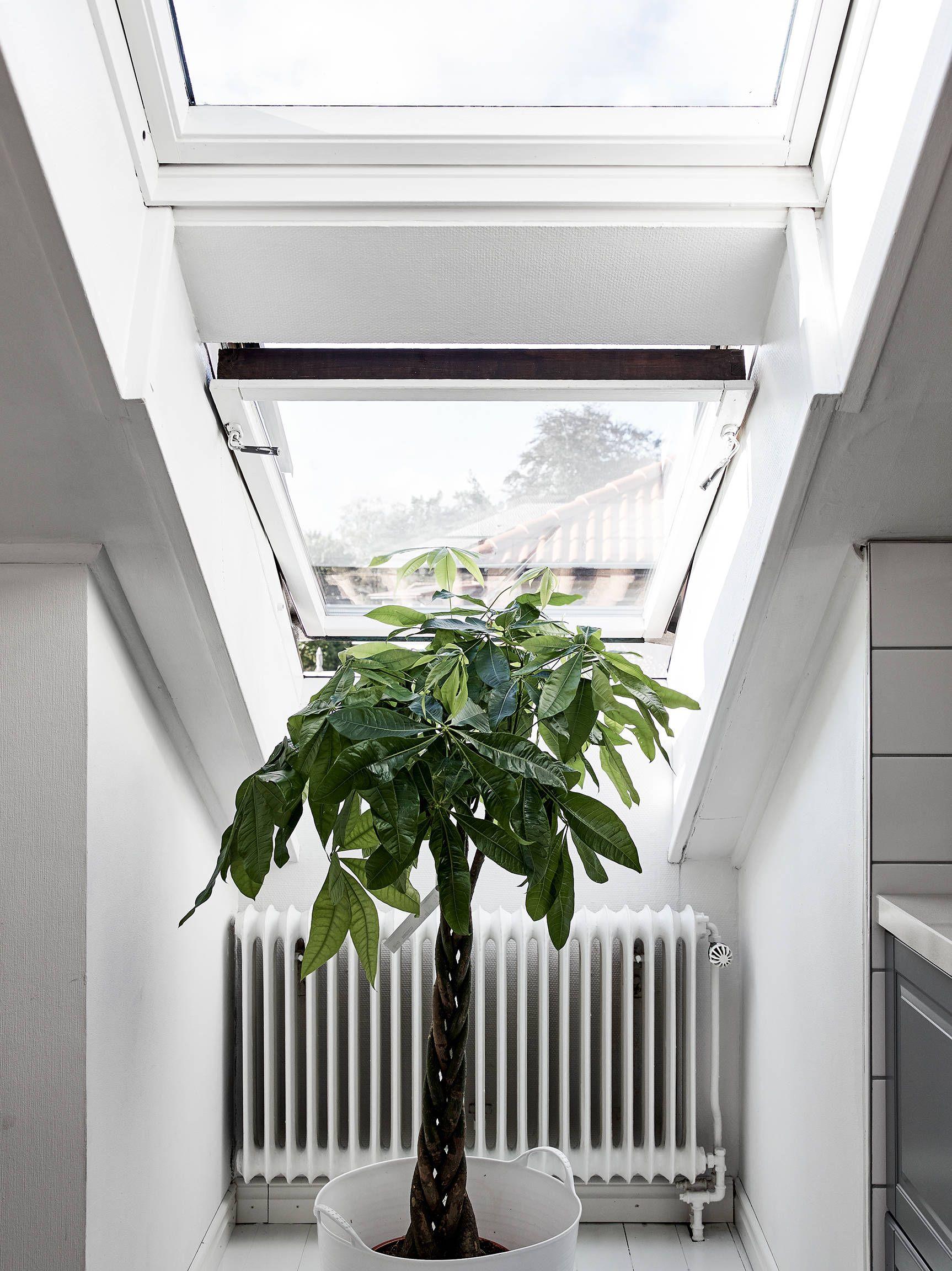 Door deze zolderwoning willen we nú allemaal een schuin plafond - Roomed