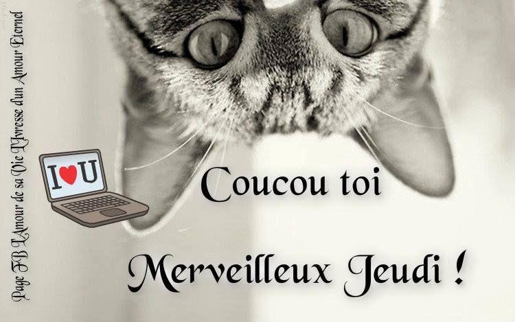 Coucou Toi Merveilleux Jeudi Jeudi Chat Bon Jeudi Humour Bon